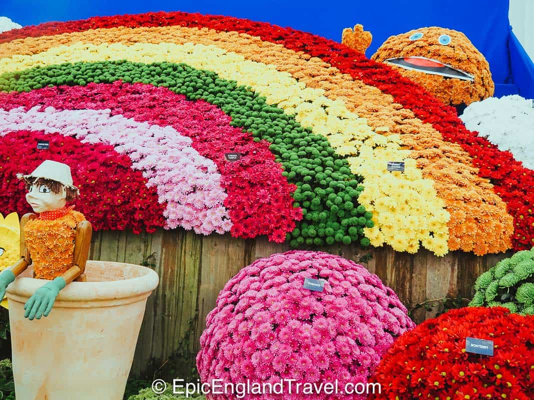 Beautiful displays at the Chelsea Flower show in lLondon