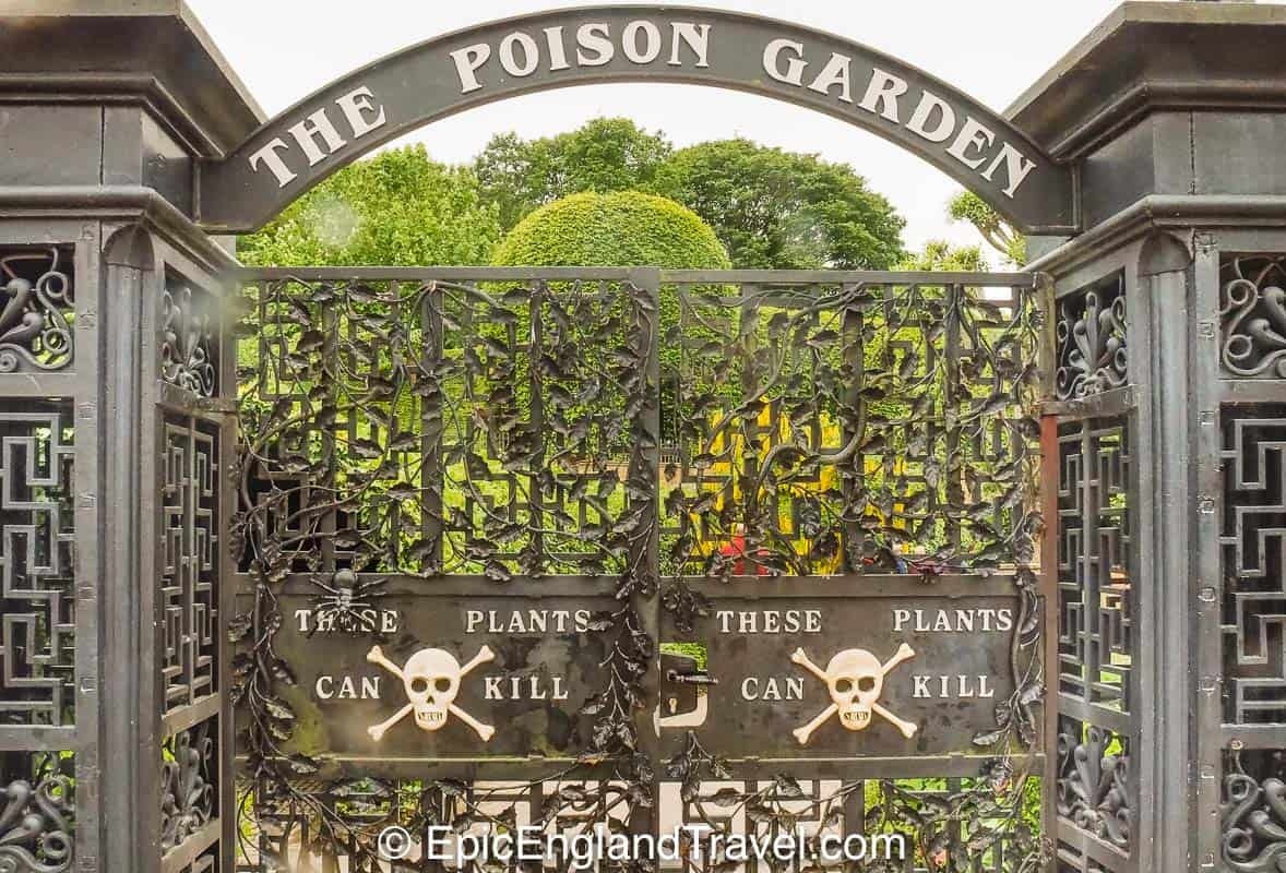 The poison garden at Alnwick Castle in Northumberland