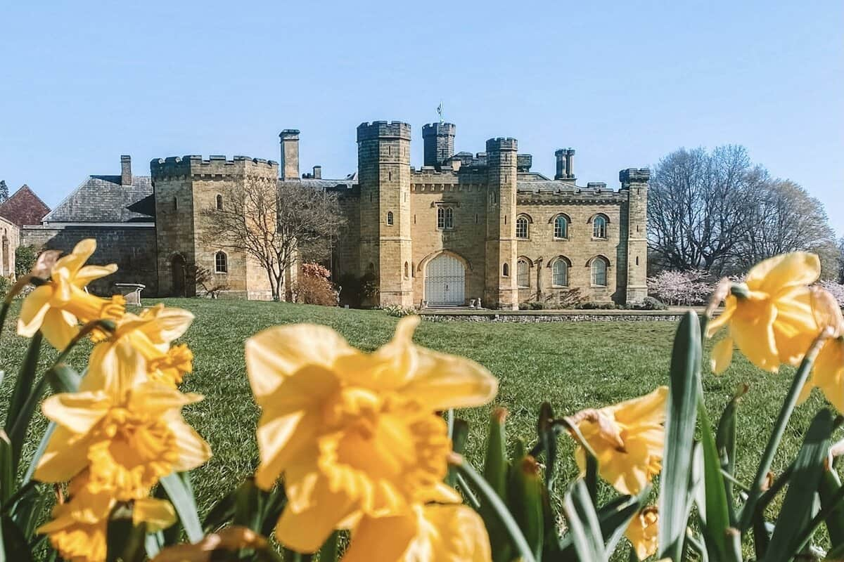 chiddingstone Castle with daffodils in front